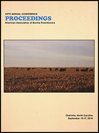 Cover image of the 49th Conference Proceedings: An image of a herd of Angus cattle grazing in a field at dusk. Yellow background.