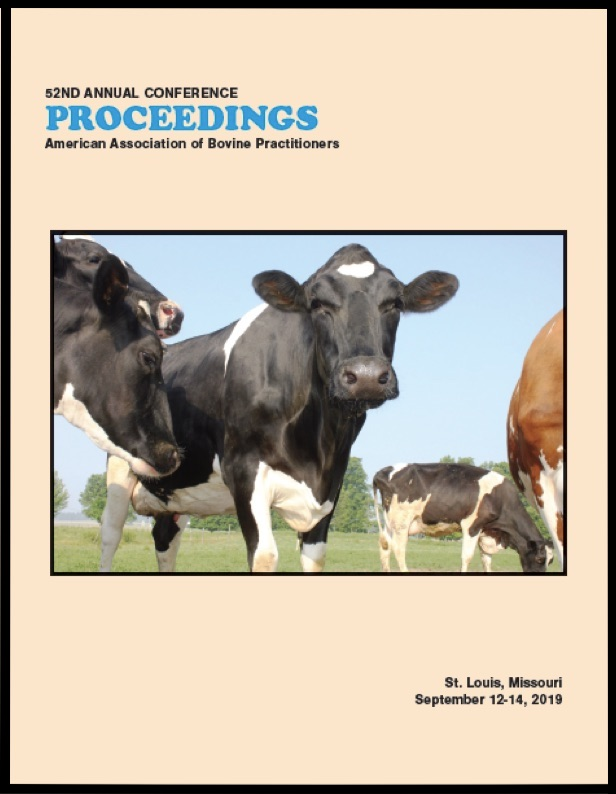 Cover image of the 52nd Conference Proceedings: A photo of a herd of cattle shot from below. A black and white cow is looking curiously at the phototgrapher. Yellow